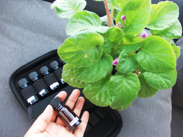 Pachet Aparat de odorizare profesional IMKER AromaLUX XS02 + geanta + 5 arome parfum 4