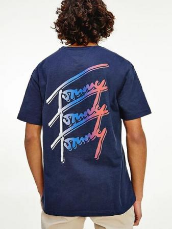 Tricou barbati Tommy Jeans Repeat DM0DM10228 [2]
