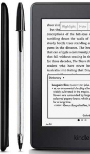 KINDLE PAPERWHITE 2015 - Alb4
