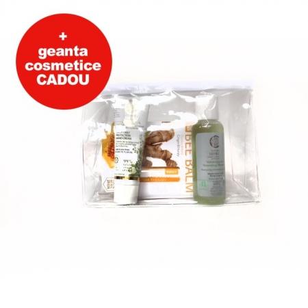 Set cosmetice cu gentuta cosmetice cadou (sampon, crema de maini, balsam de buze Ghimbir)