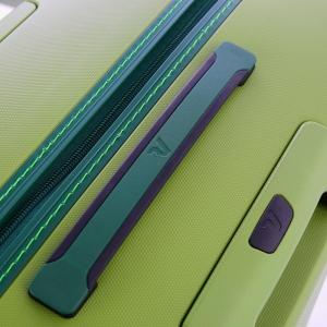 Troler cabina Roncato Box 2.0 vernil7