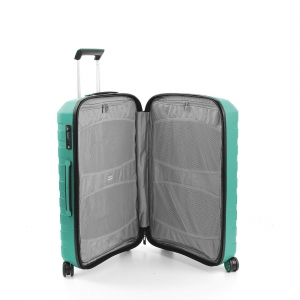 Troler Mediu Roncato Box 2.0 verde1