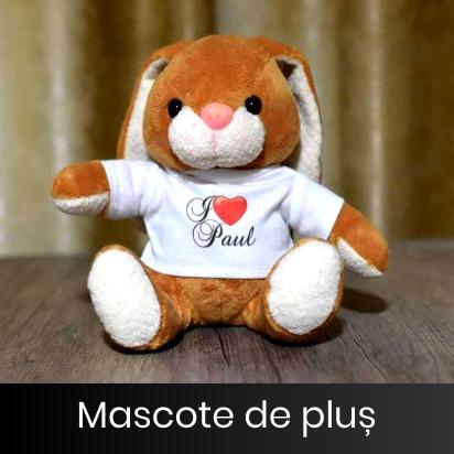 mascote_de_plus_banner