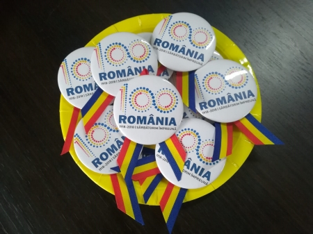 Insigne România 1001