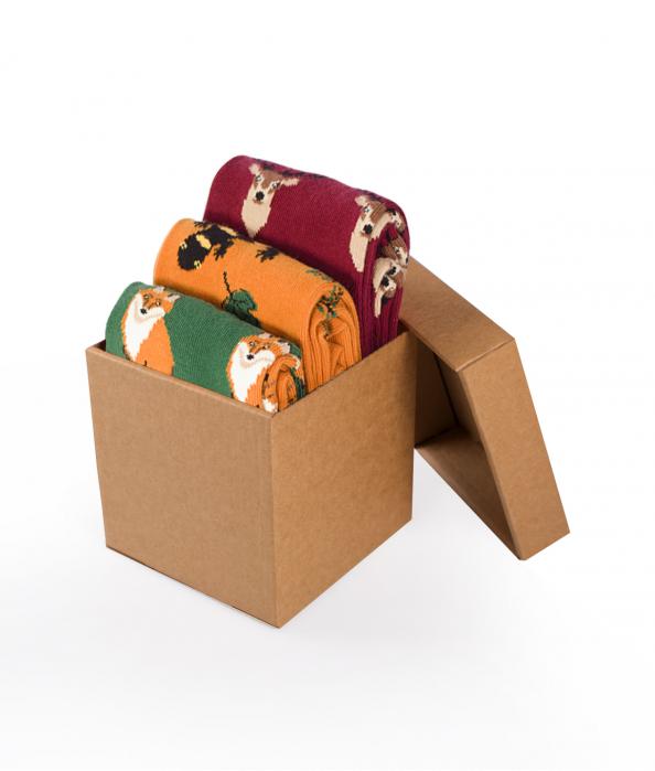 Sosete bumbac Forest Animals Box, 3 buc. [0]