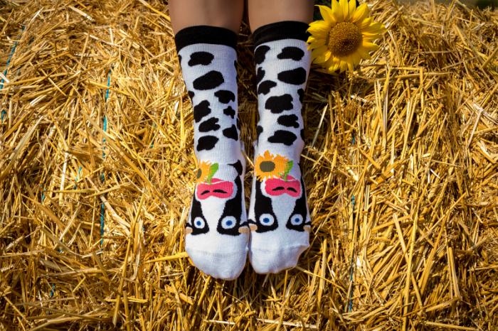 Sosete bumbac Happy Cow [3]