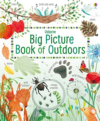 Big Picture Book Outdoors 0