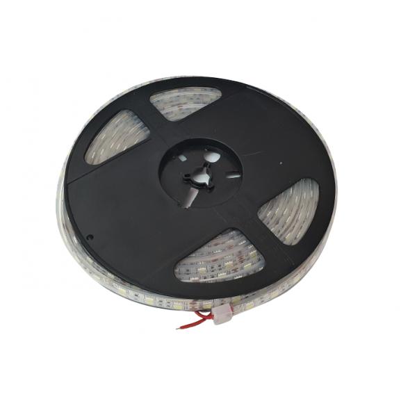 Banda LED submersibila SMD 5050 Alb Rece 60 LED pe metru IP68 [0]