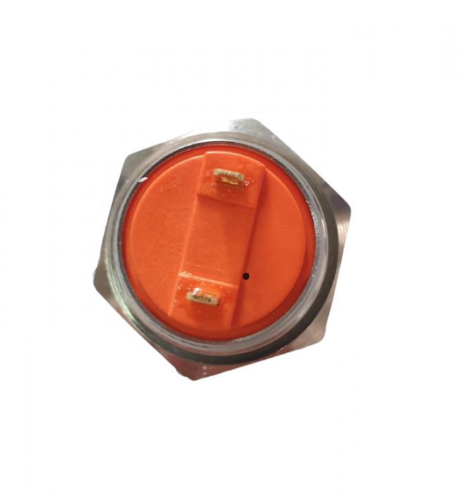 Buton de panou fara retinere LA167-S16-FJ10 [1]