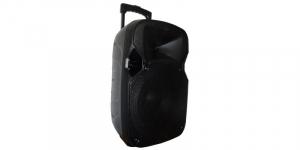 Boxa audio MP3 portabila cu amplificator si microfon wireless J-712 [0]