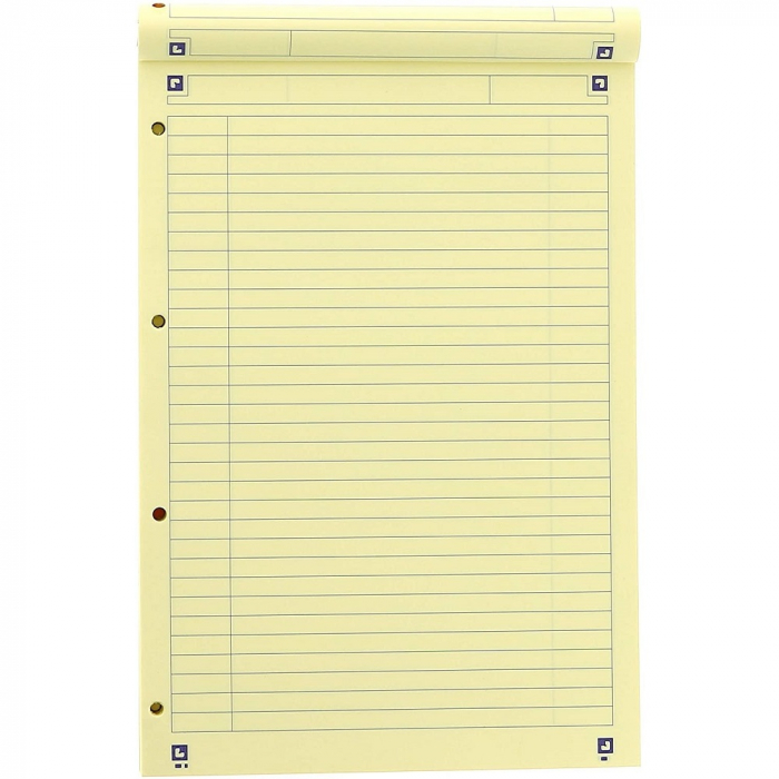 Blocnotes A4+, OXFORD Orange, 80 file galbene - 80g/mp, Scribzee, 4 perf, coperta carton - dictando 2
