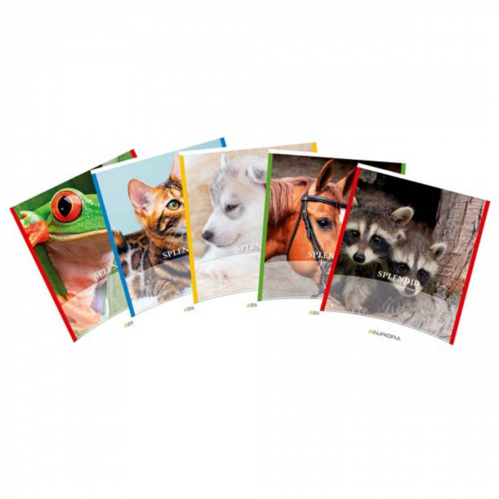 Caiet A5, 48 file - 80g/mp, liniat stanga, coperta imagini cu animale, AURORA Splendid - dictando 0