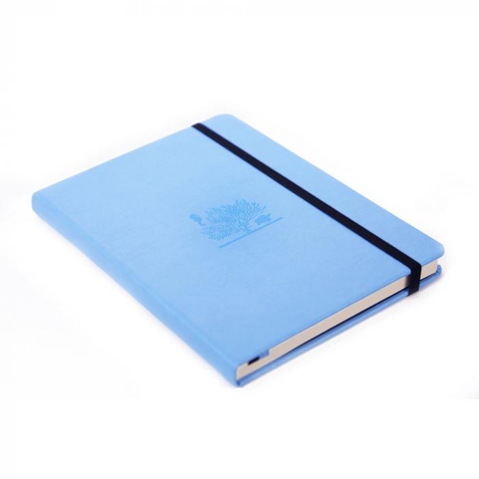 Caiet cu elastic, A5+, 96 file-100g/mp-cream, coperti rigide sky blue, Dingbats Great Barrier Reef - [0]