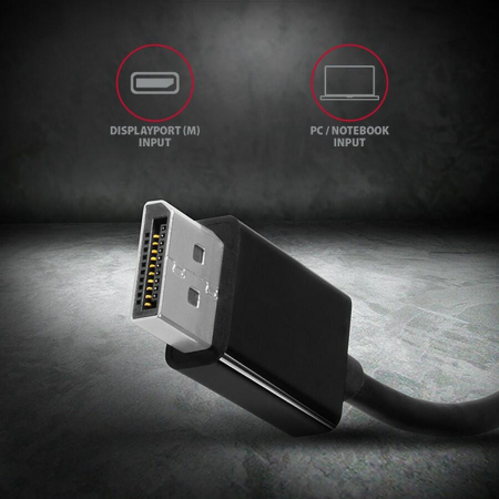 Adaptor Display port la VGA RVD-VGN [4]