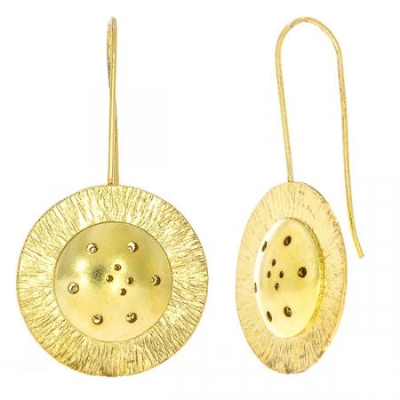 Cercei deosebiți din argint placat cu aur cu aspect satinat, lungi cu bănuț [3]
