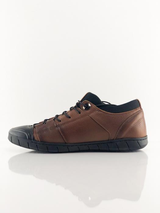 Pantofi sport din piele Brown Bear 2