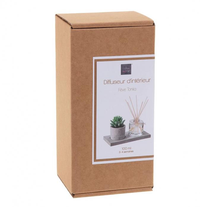 Set cadou Parfum cu betisoare si planta artificiala, suport din Ciment, 22X11X9 CM 2