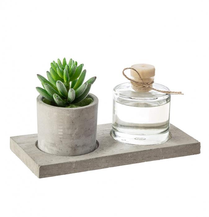 Set cadou Parfum cu betisoare si planta artificiala, suport din Ciment, 22X11X9 CM 1