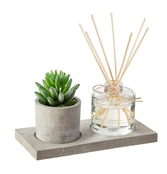 Set cadou Parfum cu betisoare si planta artificiala, suport din Ciment, 22X11X9 CM 0
