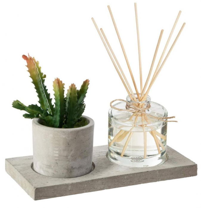 Set cadou Parfum Ambre&Jersey cu betisoare si planta artificiala, suport din Ciment, 22X11X9 0