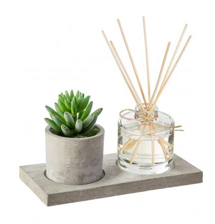 Set cadou Parfum cu betisoare si planta artificiala, suport din Ciment, 22X11X9 CM0