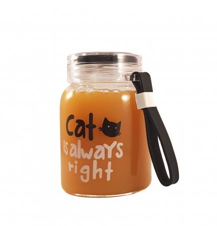 Sticla din sticla CAT, 300 ml1