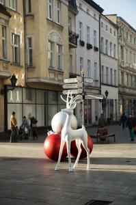 Rudolph permanent5