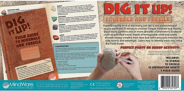 Dig It Up! Fossils & Minerals 2