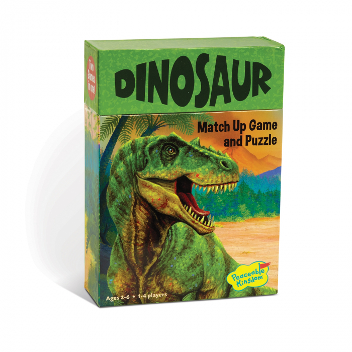 Match Up Dinosaurs 0