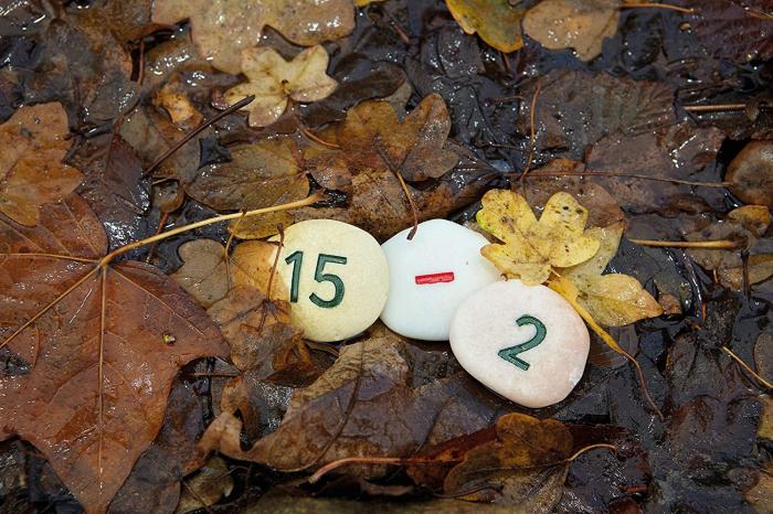 Pietricele cu numere - Set Matematica [7]