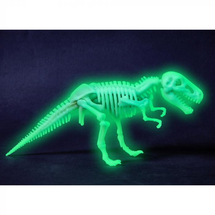 T-rex fosforescent - Haba 1