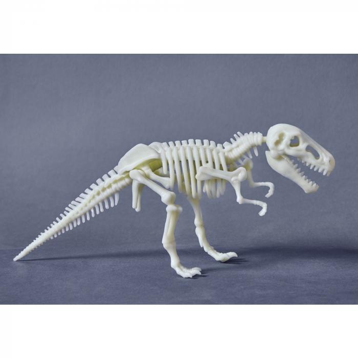 T-rex fosforescent - Haba 0