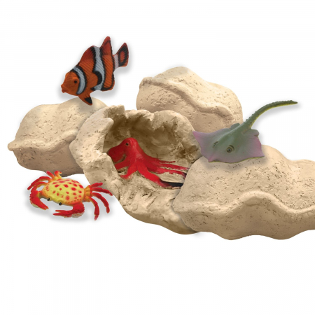 Dig It Up! Discoveries: Sea Life3