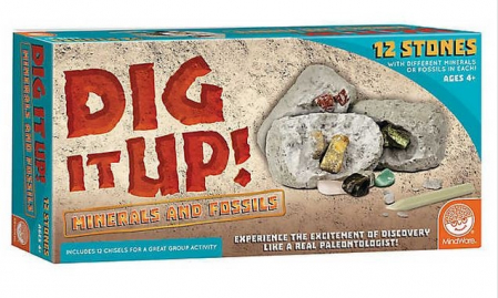 Dig It Up! Fossils & Minerals0