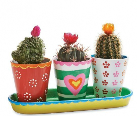 Paint your own porcelain flower pots1