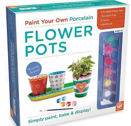 Paint your own porcelain flower pots0