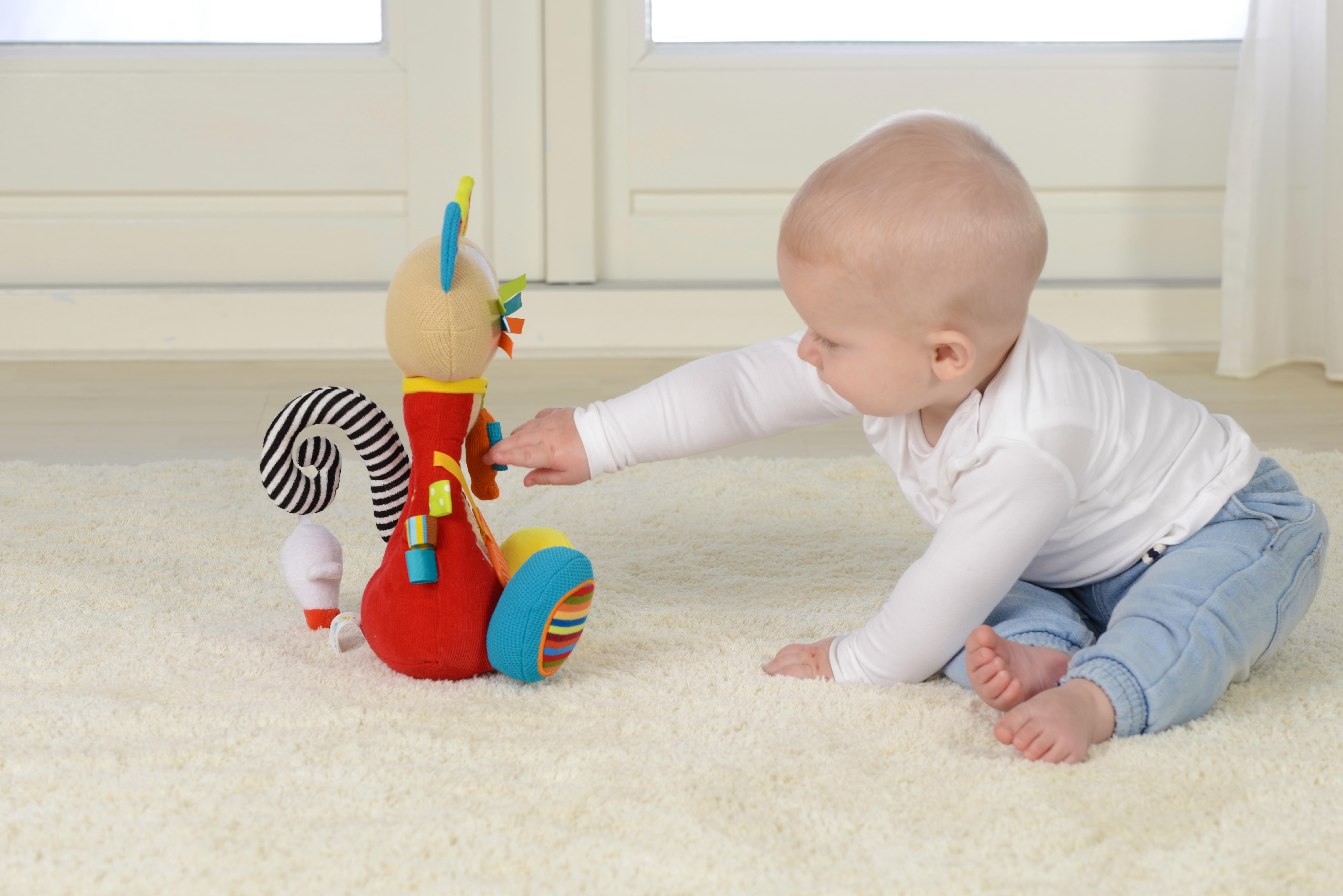 Pisică siameză, jucărie senzorială2