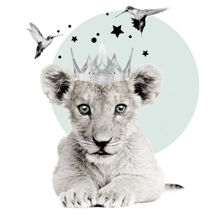 Autocolant Camera Copii Little Lion [1]