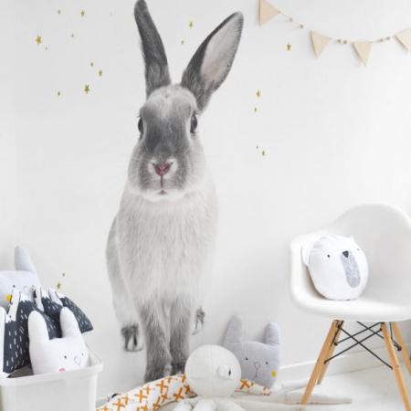 Autocolant Camera Copii Harry The Rabbit [0]