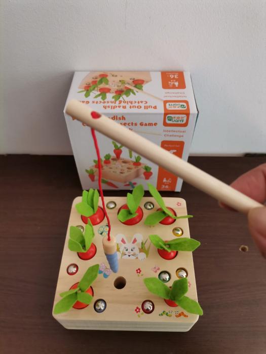 Joc din lemn Metoda Montessori Motricitate Morcovi [8]