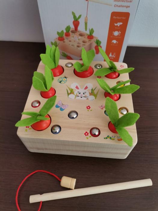 Joc din lemn Metoda Montessori Motricitate Morcovi [9]
