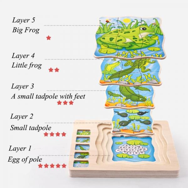Puzzle din lemn in straturi Ciclul vietii Broascuta - Fluturas 1