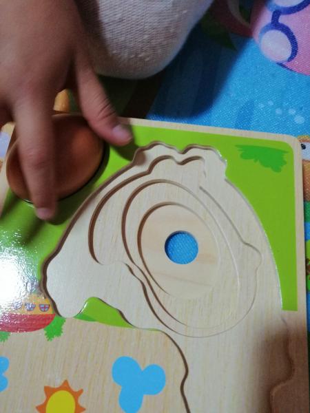 Puzzle din Lemn in Straturi Ciclul Vietii Puiul - Puzzle Lemn Multistraturi Ciclul Vietii Puiul 8
