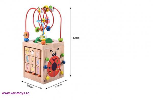 Cub Montessori educational Buburuza din lemn 6 in 1 2