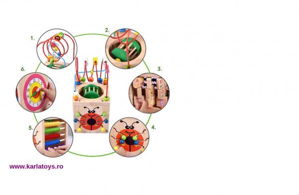 Cub Montessori educational Buburuza din lemn 6 in 1 1