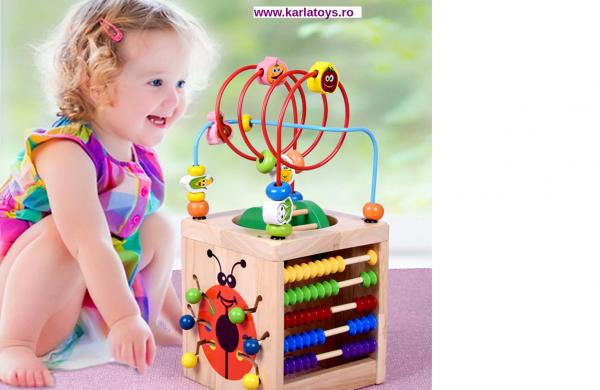 Cub Montessori educational Buburuza din lemn 6 in 1 0
