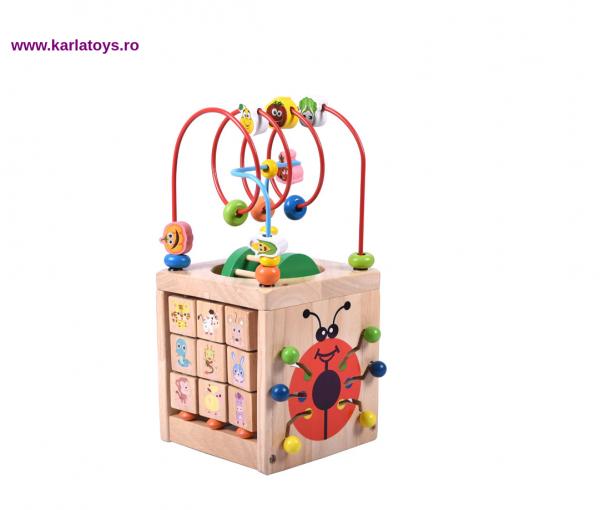 Cub Montessori educational Buburuza din lemn 6 in 1 3