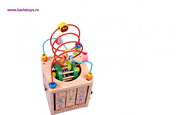 Cub Montessori educational Buburuza din lemn 6 in 1 4