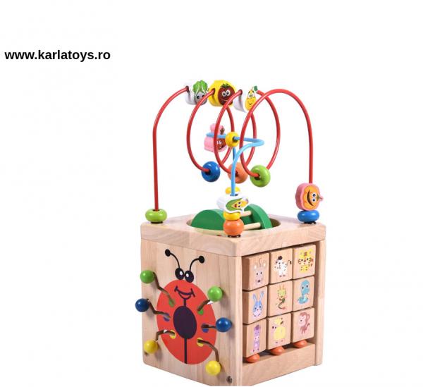 Cub Montessori educational Buburuza din lemn 6 in 1 6