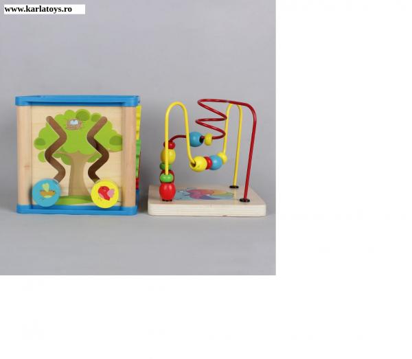 Cub din lemn 5 in 1 Wisdom Box 1